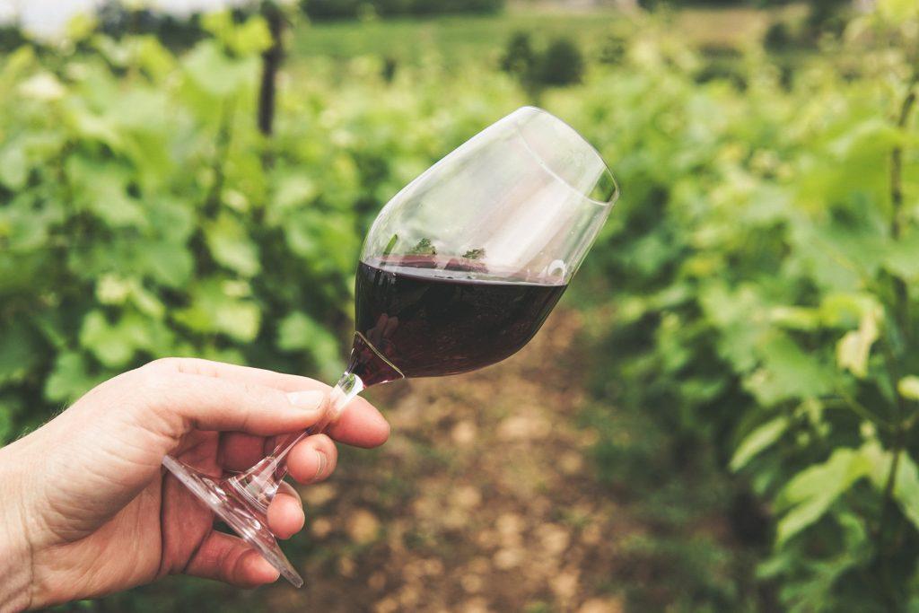 Vanity Phone Numbers for Wineries